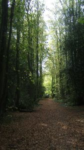 Finedon Pocket Park